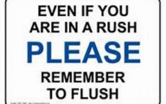 Why Don't People Flush?